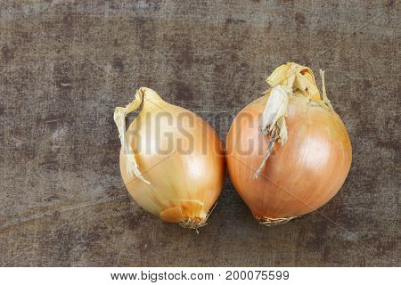 two brown onions on a grungy metal background