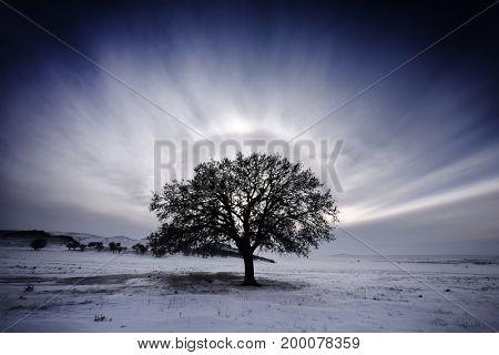 Halo effect around the sun in winter, Dobrogea, Romania