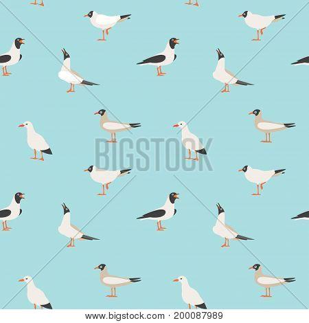 Sea seamless pattern. Seamless texture with flying seagulls. Cartoon atlantic seabird, seagulls flying in blue sky vector set.