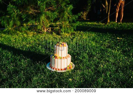 Amazing Luxury Wedding Cake On Grass In Sunset Time.