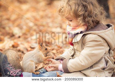 Child Feeds A Little Squirrel