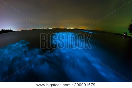 Bioluminescence in night sea water. Blue fluorescent wave of bioluminescent plankton long exposure shot Thailand.