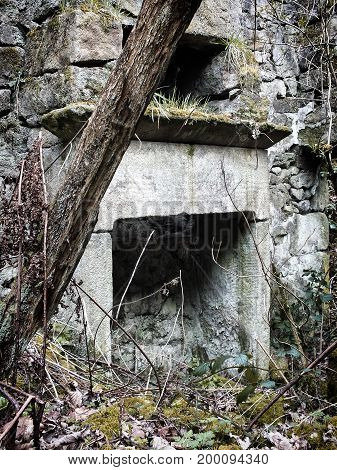 ruined abandoned stone house with tress and vegetation growing inside and large stone fireplace