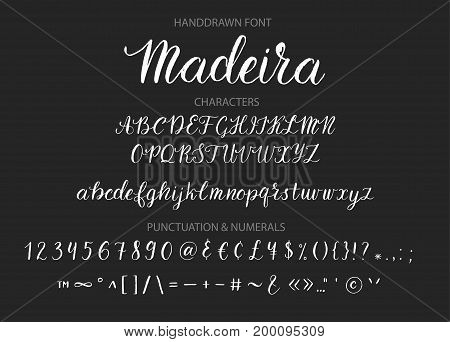 Handwritten Script font. Hand drawn brush style modern calligraphy cursive typeface. Hand Lettering and Custom Typography alphabet for Designs Logo, Greeting Cards, Poster. Vector Brush type set.