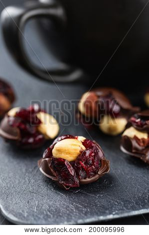 Hazelnut And Cranberries In Chocolate
