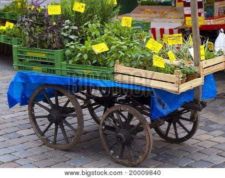 Cart with Vegetables