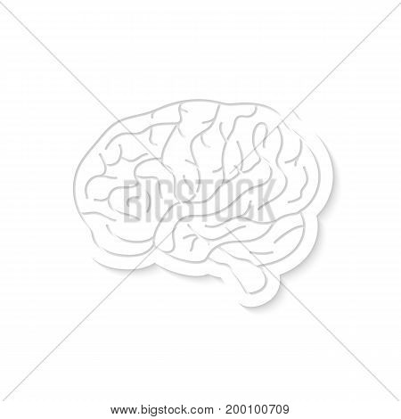 white brain icon with shadow. concept of brainy, test, exam, discovery, clever, educational material, wisdom. isolated on white background. flat style trend modern logo design vector illustration
