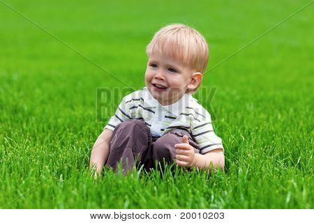 Smiling little boy sitting in fresh grass
