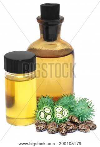 Green and dried castor beans with essential oil