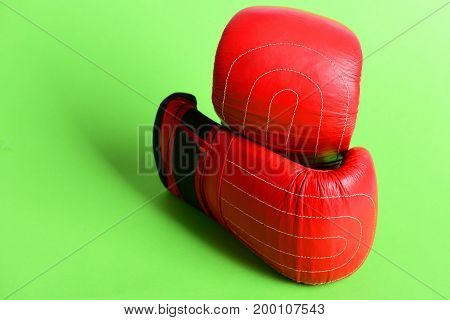 Sport Equipment Isolated On Green Background. Pair Of Leather Sportswear