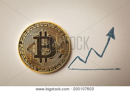 Gold coin Bitcoin and up arrow, toned