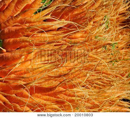 Wall Of Orange Carrots