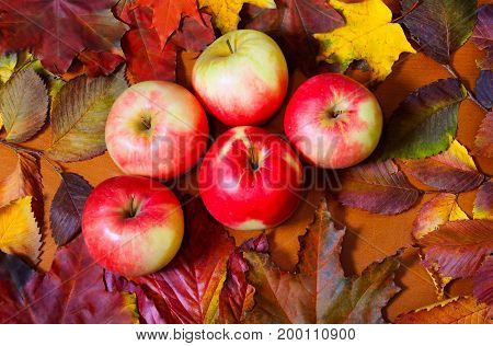 Apples and autumn leaves on wooden background