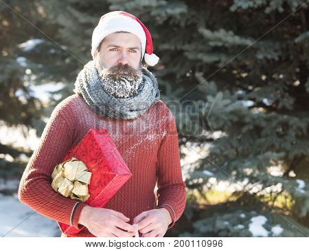Handsome Santa Man With Gift
