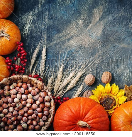 Table decorated with pumpkins and . Harvest Festival, Happy Thanksgiving. Autumn background.