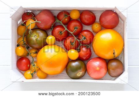 Variety of kinds of tomato in a box