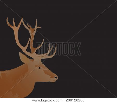 Deer head illustration on a black background