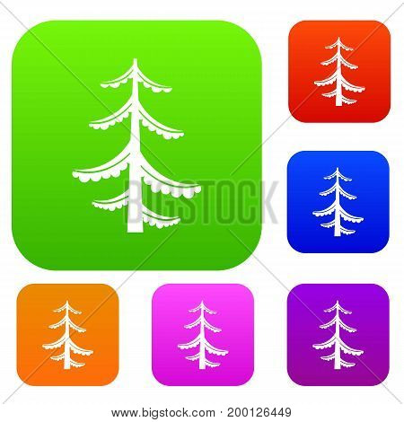 Pine set icon in different colors isolated vector illustration. Premium collection