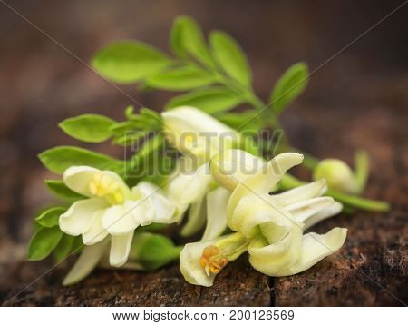 Edible moringa flowers with green leaves in timber surface