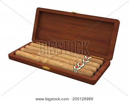 Cigars in the Humidor isolated on white background. 3D render