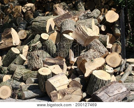 many pile of natural wooden logs. close up