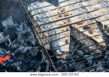 Preparation Of Fish On The Grill. The Smoldering Of Coals