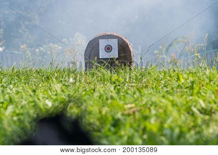 The target is attached to a log. In the background smoke.