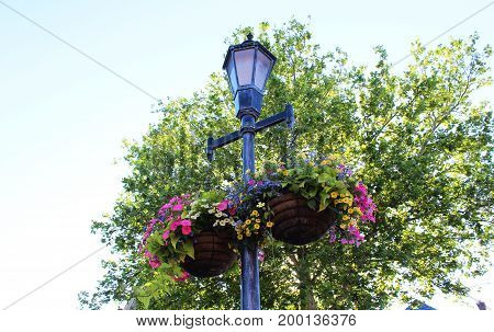 Lampposts and flowers in a small town