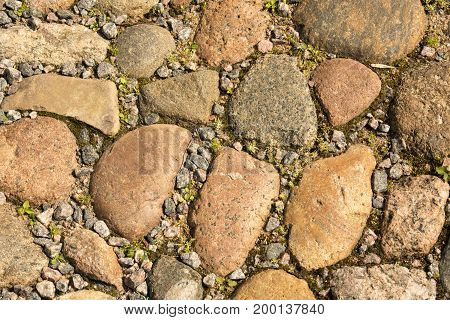 Paving stones road with grass moss between stones background