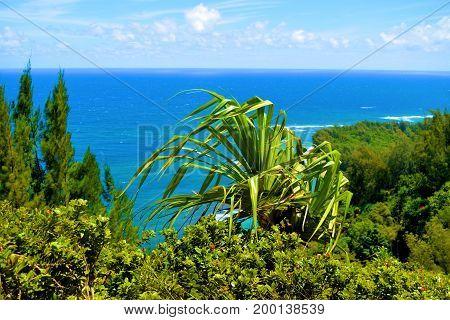 Lush green tropical landscape overlooking Kee Beach taken in Kauai, HI