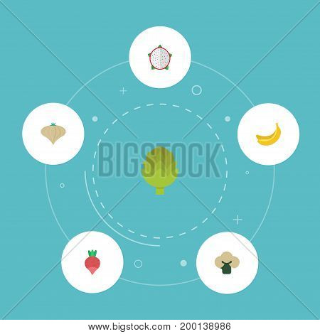 Flat Icons Pitaya, Herbaceous Plant, Broccoli And Other Vector Elements