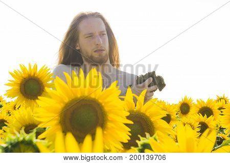 Young model suffers heat in a sunflower field