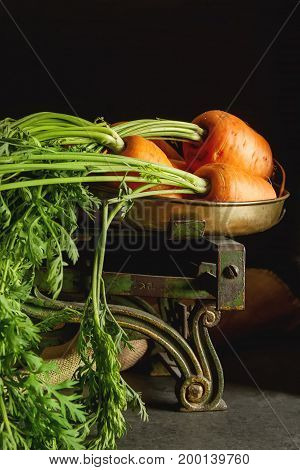 Young Carrots. Fresh Vegetarian Products. Delicious Food For Chi