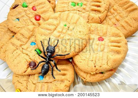 Peanut Butter Cookies with a Toy Black Ant