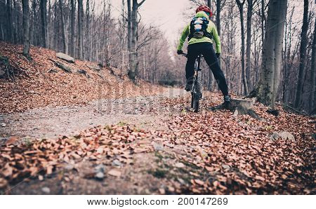 Mountain biker cycling on trail in forest. Mountains in autumn woods landscape. Man cycling MTB bike on rural country road. Sport fitness motivation and inspiration.