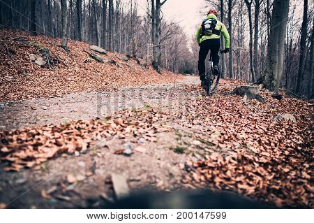 Mountain biker cycling on trail in woods. Mountains in winter or autumn landscape forest. Man cycling MTB on rural country road. Sport fitness motivation and inspiration.