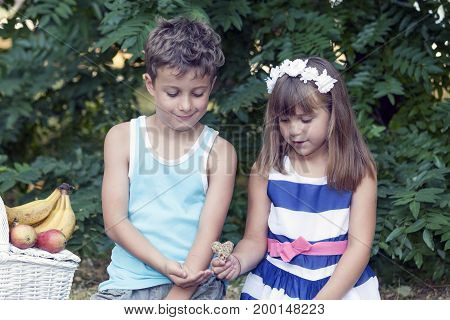 Little Cute Boy And Girl Sit  In The Grass And Play