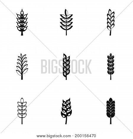Grains icon set. Simple style set of 9 grains vector icons for web isolated on white background