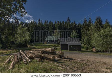Forests under Velky Javornik hill in east Moravia
