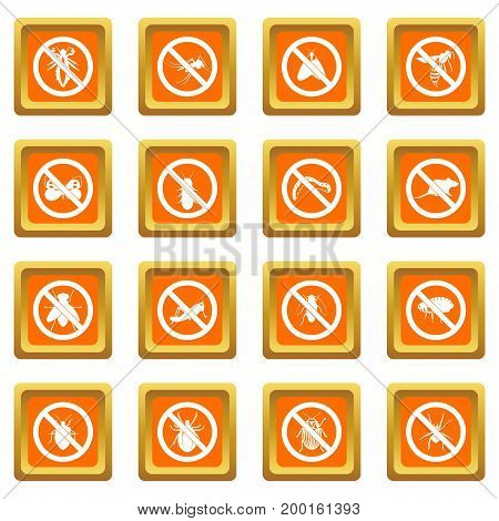 No insect sign icons set in orange color isolated vector illustration for web and any design
