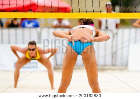 Volleyball player is a female beach volleyball beach player giving hand signals to her team mate while she faces her opponent across the net.