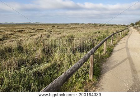 Piedras river marshlands footpath close to El Rompido Huelva Spain