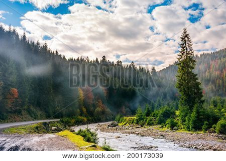 Valley With River In Foggy Forest