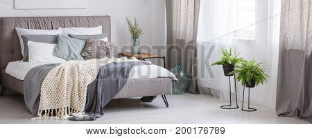 Spacious Bedroom With Plants