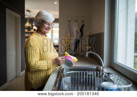 Smiling senior woman washing dish in kitchen sink