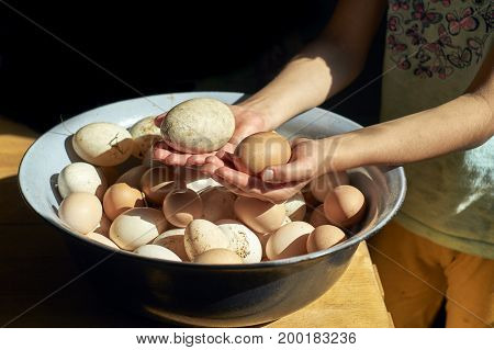 Teen girl holding dirty freshly laid duck's eggs and hen's eggs