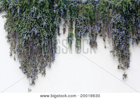 Mediterranean Wall Decoration