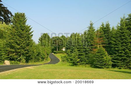 road through countryside