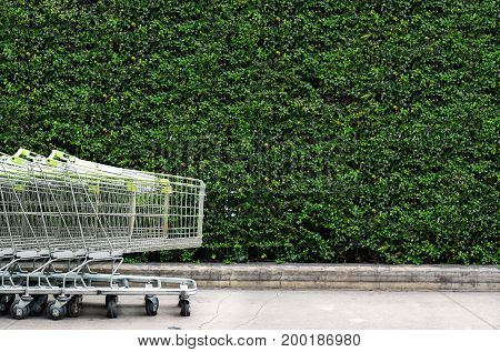 shopping carts row outdoor prepare for the highly sale season.