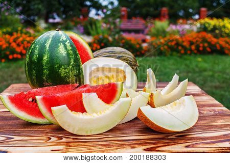On the wooden table round sliced green striped glossy ripe watermelon with juicy red flesh and cut in half and sliced ripe melons on open air.